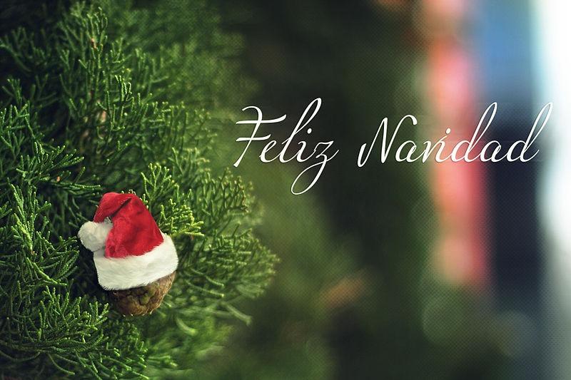 Feliz Navidad !